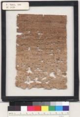 Tiberius-Papyrus--204x300